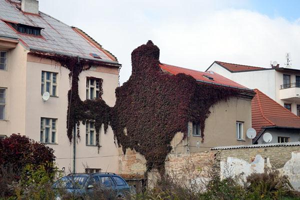 Что делать в Праге? Поездка в Nymburk и Postřižinský pivovar
