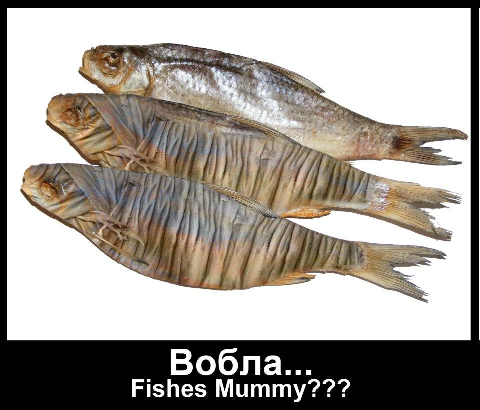 Вобла — Fishes Mummy — ДЕscriber